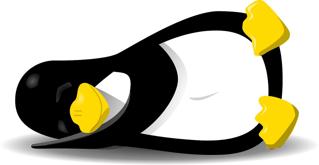 Linux afbeelding Vacature: Junior Linux beheerder in Amsterdam